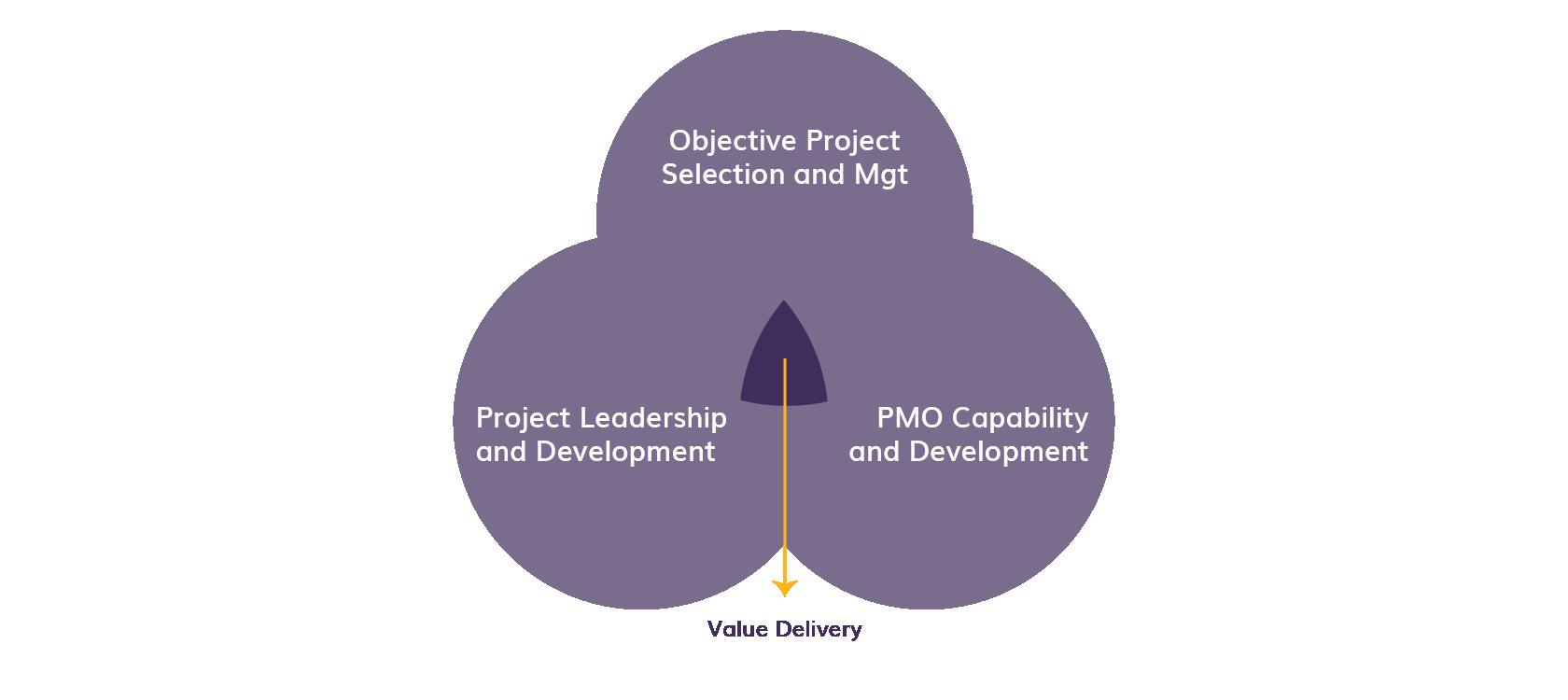 Enterprise Program Management Centric Consulting