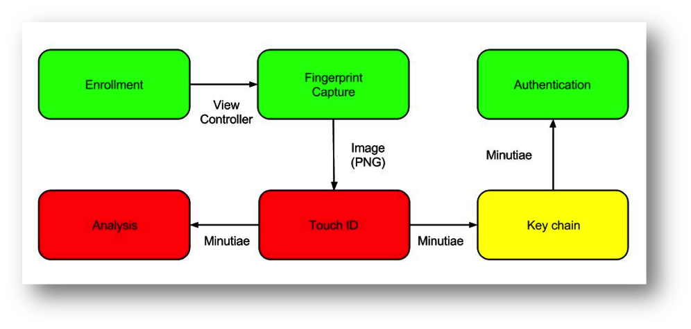 MFA diagram.jpg