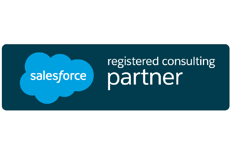 Salesforce Consulting Partner Icon